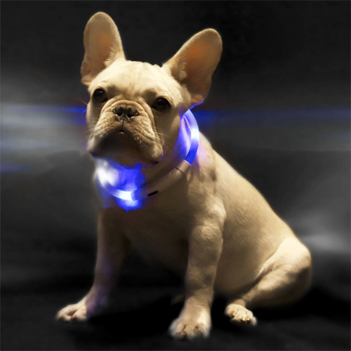 Xiaomi Mini Monstar Lighting Pet Collar